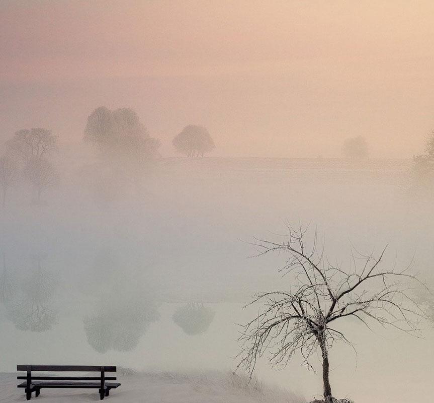 Bank und Baum im Nebel